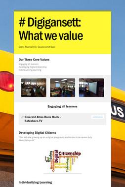 # Digigansett:  What we value