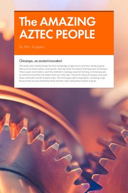 The AMAZING AZTEC PEOPLE