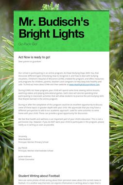 Mr. Budisch's Bright Lights