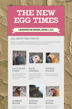 The New Egg Times