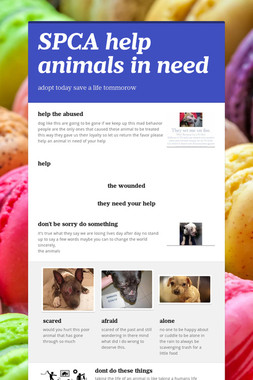 SPCA help animals in need