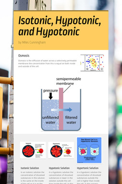 Isotonic, Hypotonic, and Hypotonic