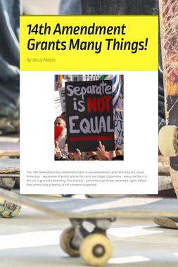 14th Amendment Grants Many Things!