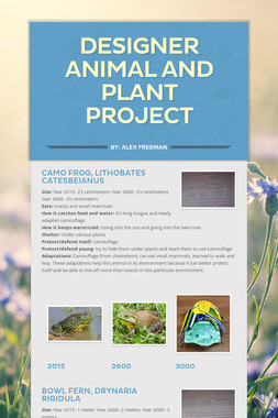 Designer Animal and Plant Project