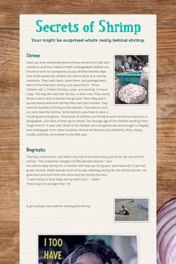 Secrets of Shrimp