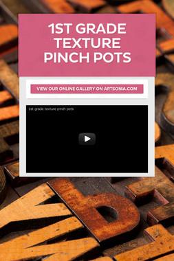 1st Grade Texture Pinch Pots