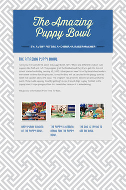 The Amazing Puppy Bowl