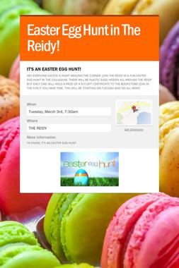 Easter Egg Hunt in The Reidy!