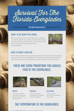 Survival For The Florida Everglades