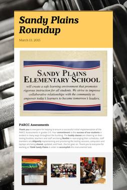 Sandy Plains Roundup