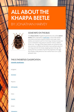 ALL ABOUT THE KHARPA BEETLE