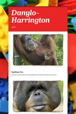 Danylo-Harrington