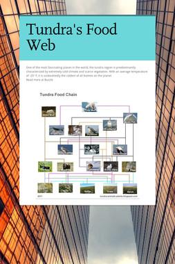 Tundra's Food Web