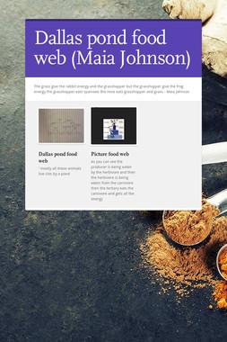 Dallas pond food web (Maia Johnson)