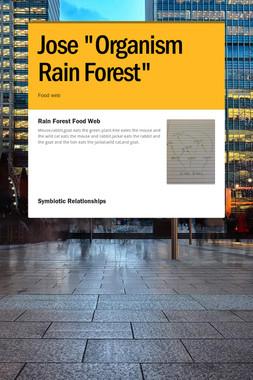 "Jose ""Organism Rain Forest"""