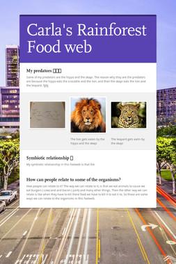 Carla's Rainforest Food web