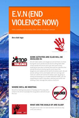 E.V.N (END VIOLENCE NOW)