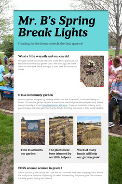 Mr. B's Spring Break Lights