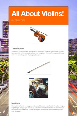All About Violins!
