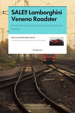 SALE!! Lamborghini Veneno Roadster