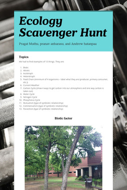 Ecology Scavenger Hunt