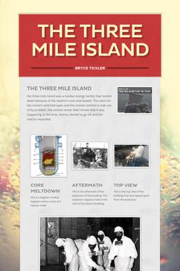 The Three Mile Island