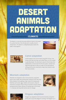 DESERT ANIMALS ADAPTATION