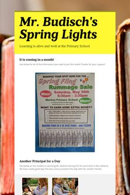 Mr. Budisch's Spring Lights