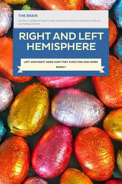 right and left hemisphere