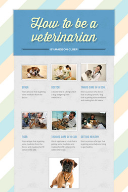 How to be a veterinarian