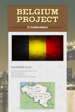 Belgium Project