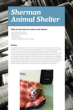 Sherman Animal Shelter