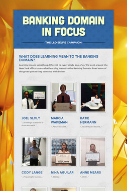 Banking Domain in Focus