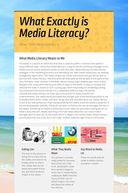 What Exactly is Media Literacy?