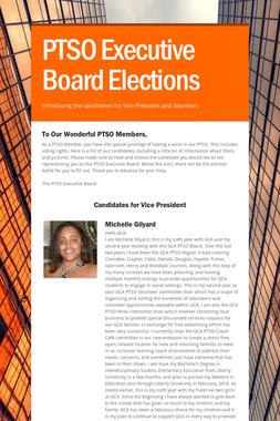 PTSO Executive Board Elections