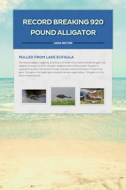 Record breaking 920 pound alligator