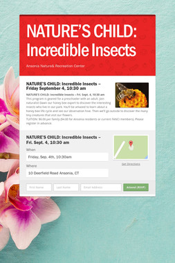 NATURE'S CHILD: Incredible Insects
