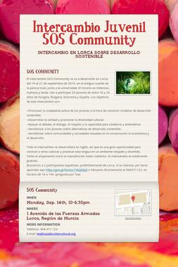 Intercambio Juvenil SOS Community