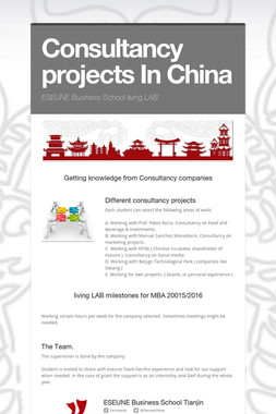 Consultancy projects In China