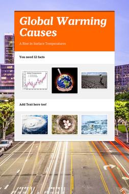 Global Warming Causes