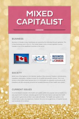 Mixed Capitalist