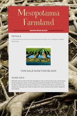 Mesopotamia       Farmland