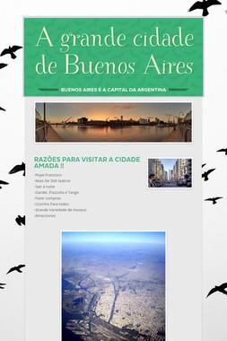 A grande cidade de Buenos Aires