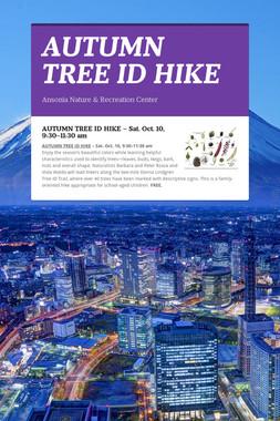 AUTUMN TREE ID HIKE
