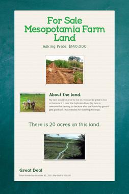 For Sale Mesopotamia Farm Land