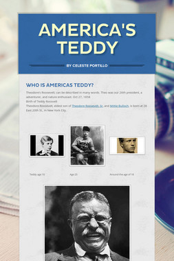 America's Teddy