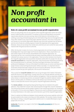 Non profit accountant in