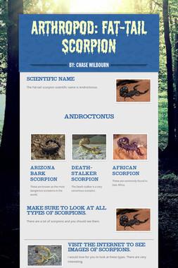 Arthropod: Fat-tail Scorpion
