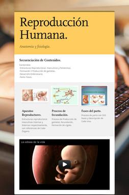 Reproducción Humana.