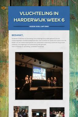 Vluchteling in Harderwijk week 6